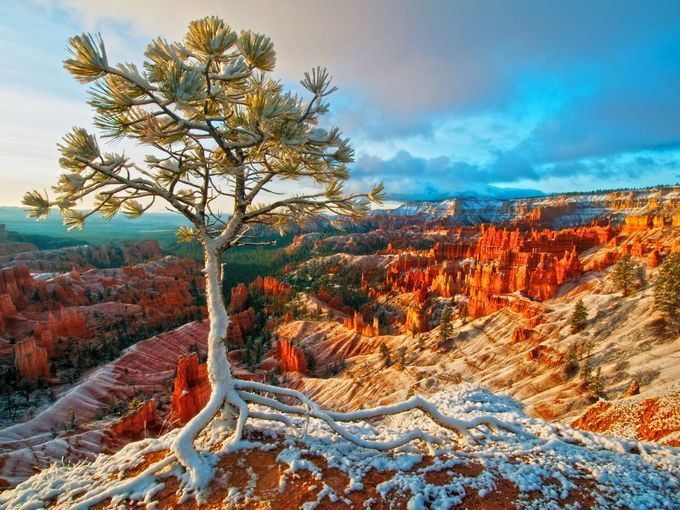 635951264627981285-21.-Bryce-Canyon-NP-Curtis-Kautzer-STE-small