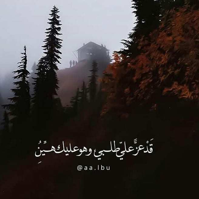 winter_magazine1-٢٠١٩٠٩٢٣-0087
