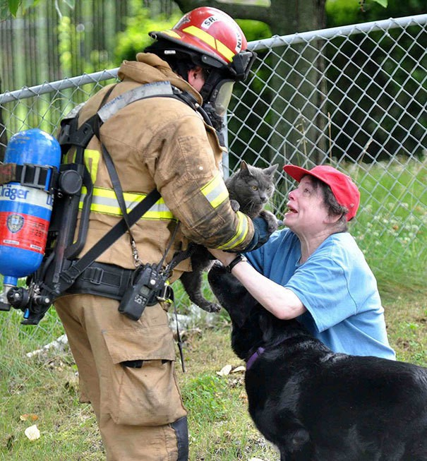 firefighters-rescuing-animals-saving-pets-43-5729eee5d82a4__605