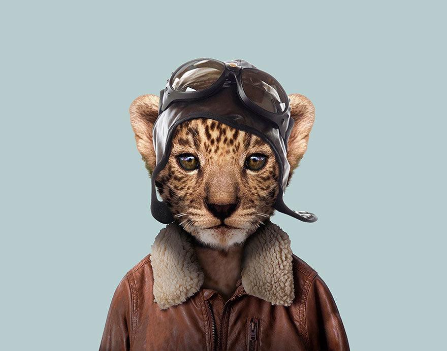 ماذا لو إرتدت الحيوانات أزياء بشرية!!