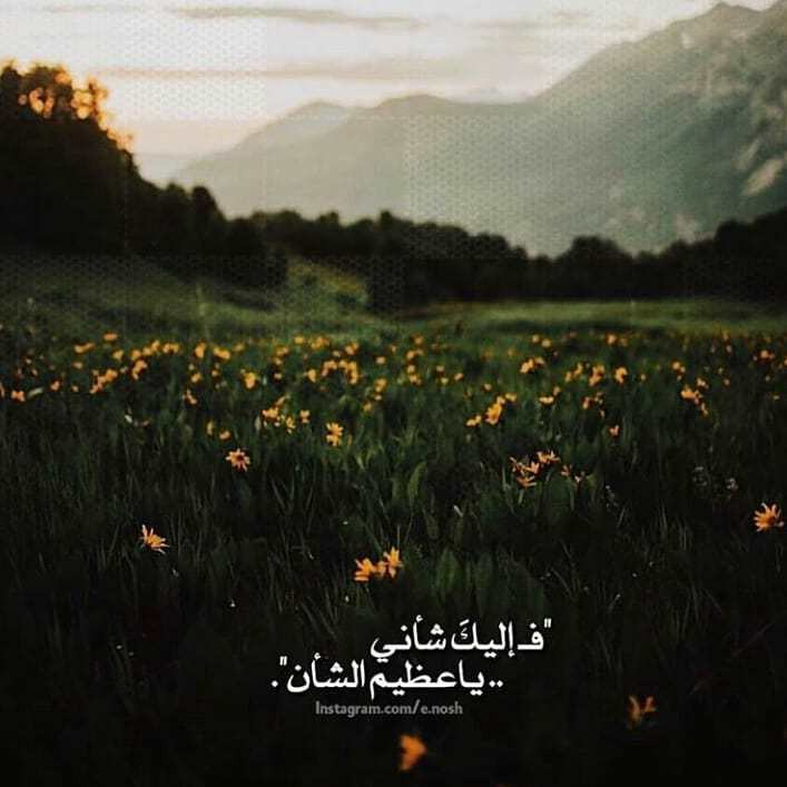 winter_magazine1-٢٠١٩٠٩٢٣-0070