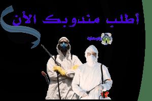 حماية لمكافحة الحشرات