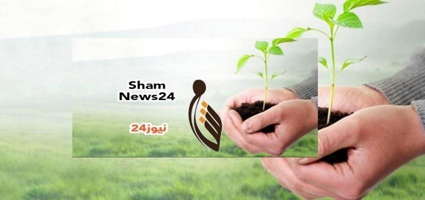 شام نيوز 24 : أخبار سوريا – السوريين حول العالم