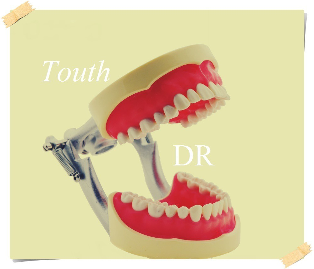 HOT-SELL-DENTAL-ACRYLIC-DENTURE-TEETH