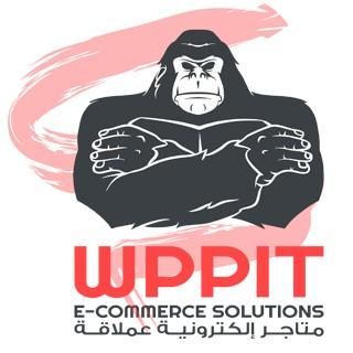 نجاح موقع wppit.com