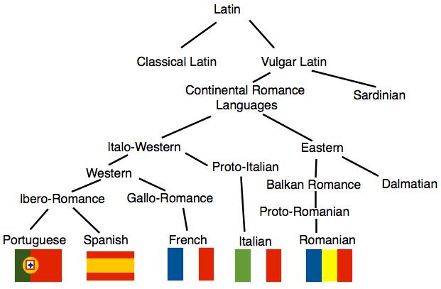 اللغات الرومانسية لا تفقه في الحب شئ.